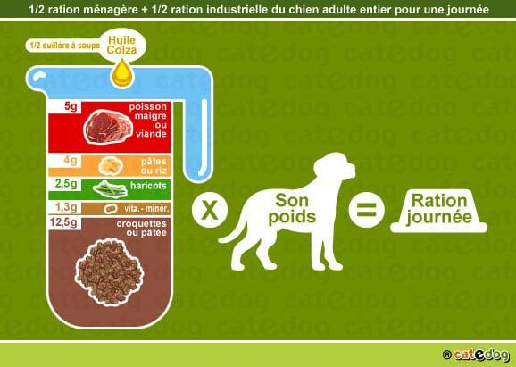 alimentation-ration-croquette-chien-adulte-entier