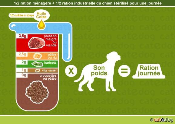 alimentation-ration-croquette-chien-castre-sterilise
