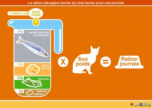 alimentation-ration-menagere-chat-age-senior