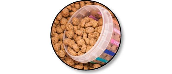 alimentation-ration-nourir-manger-chien-chiot