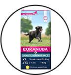 eukanuba-chien-adulte-grande-race