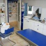 clinique-veterinaire-alpha-cannes-consultation-2