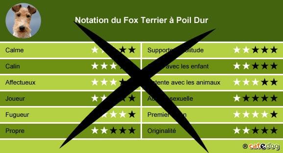 acheter-adopter-prix-chien-fox-terrier-dur