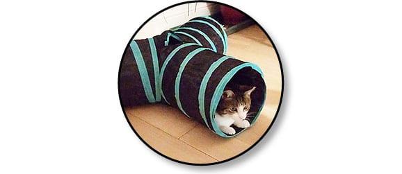 Jouet tunnel en tissu pour le chat d'appartement