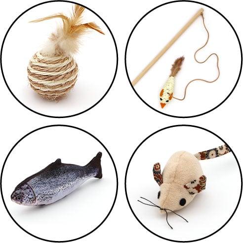 Jouet balle, canne à pêche, poisson et souris pour le chat