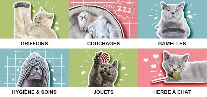 Boutique d'accessoires pour le chat et le chaton