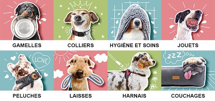Boutique d'accessoires pour le chien et le chiot